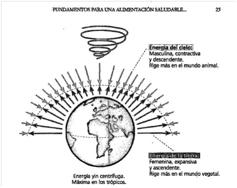 Resultado de imagen para CENTRIPETA CENTRIFUGA EXPANSIVA