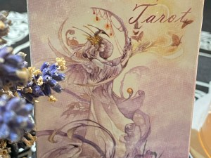 "Tarot Shadowscapes (English) ""Last Unit"""