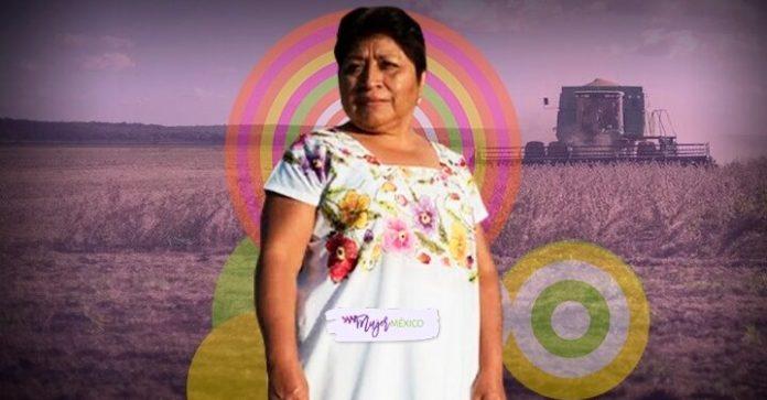 Quién es Leydy Pech, la activista maya que frenó a Monsanto? | Mujer México