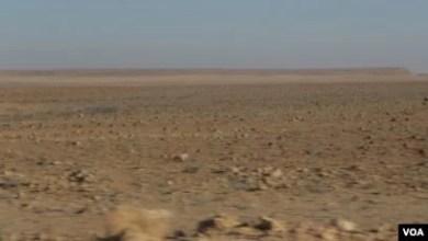 Photo of Amnistia Internacional pede ao Governo que investigue desvio de terras no Sul de Angola