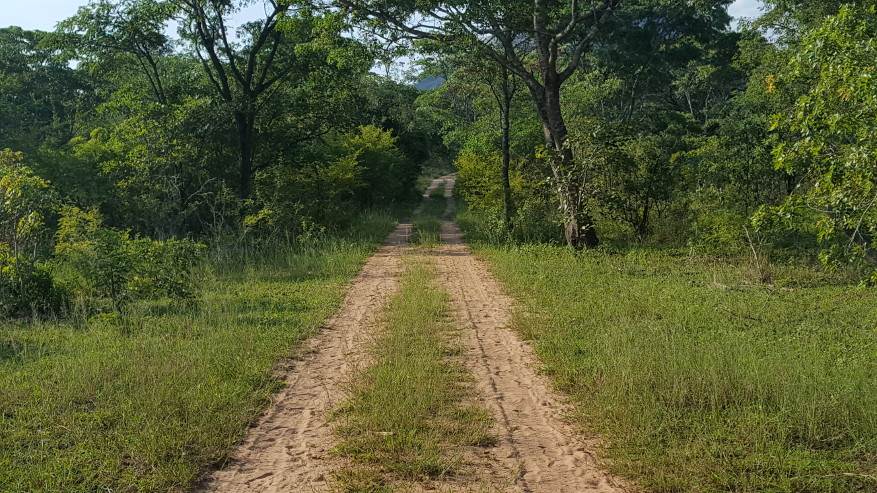 Section of the road to Mukosi School