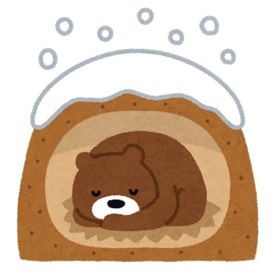 冬眠中の熊
