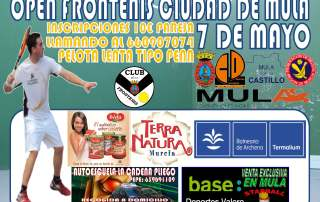 cartel campeonato frontenis mayo 2016