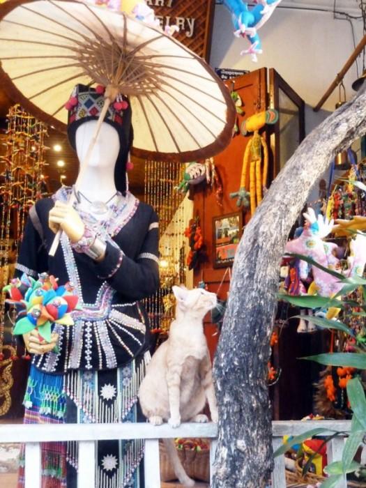 Laos, vitrines de magasins de Luang Prabang