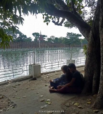 Jeune Couple Birman