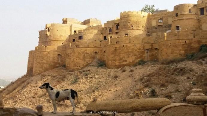 Jaisalmer, le Fort