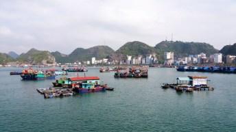 Petits restaurants installés face à la ville de Cat Ba Vietnam