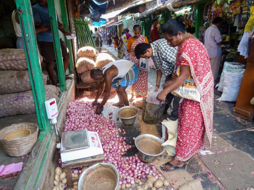 Les allées d'oignons du marché
