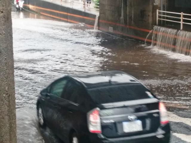 車 水位 冠水