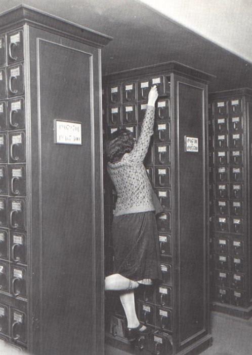 librarian climbing