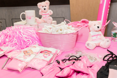 MakingStridesKickoff2015-049