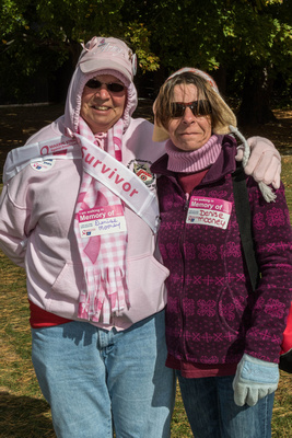 MakingStridesWalk2015-003
