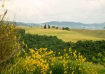 A famosa igrejinha do Vale d Orcia, na Toscana. Vejo minhas fotos como um premio de çaca!