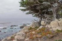 carmel-big-sur-california