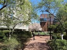 Barnard College/Columbia University voltada apenas para mulheres