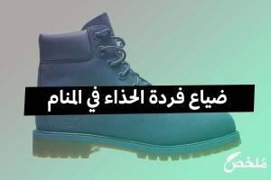 ضياع فردة الحذاء في المنام