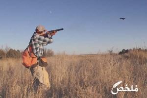 تفسير حلم صيد العصافير