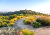 Panoramic_Haven-2762