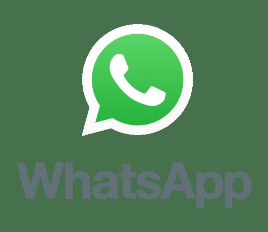 Logo do Whatsapp PNG fundo transparente