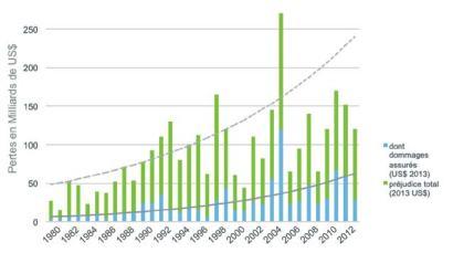 graphique perte assurance dû aux catastrophes naturelles