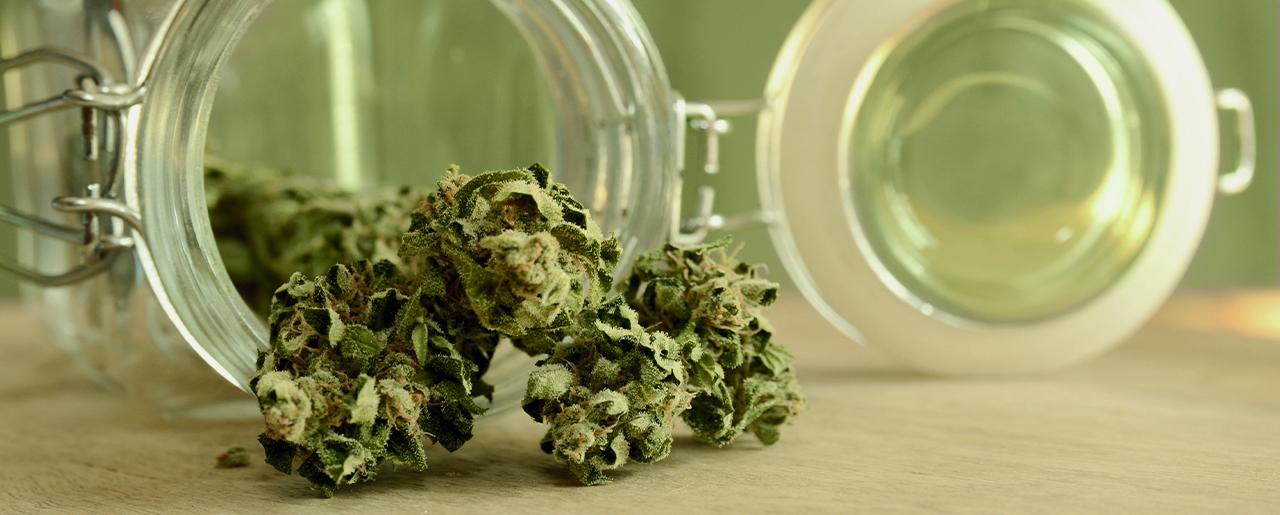 Cannabis et assurances