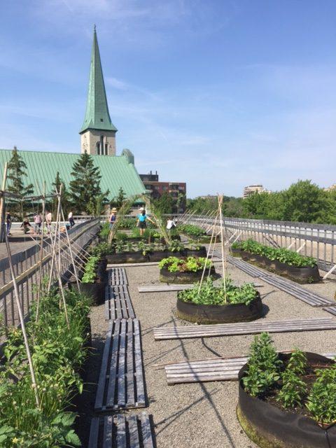 Projet collège Saint-Nom-de-Marie