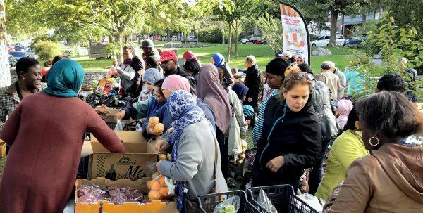 Le Marché social itinérant de la table de concertation sur la sécurité alimentaire de Côte-des-Neiges, un projet collectif ayant un impact réel!