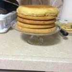 עוגת שכבות1