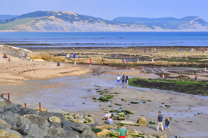 Lyme Regis (Fot. Marta Marakchi © All rights reserved)
