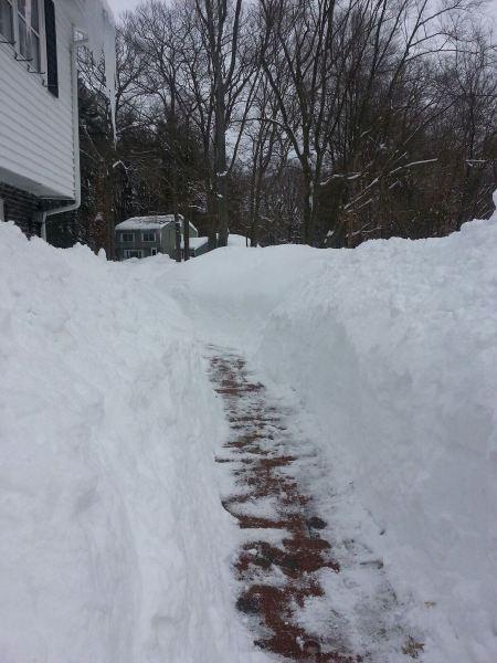 My front walk in Massachusetts. By Karen Zanellis