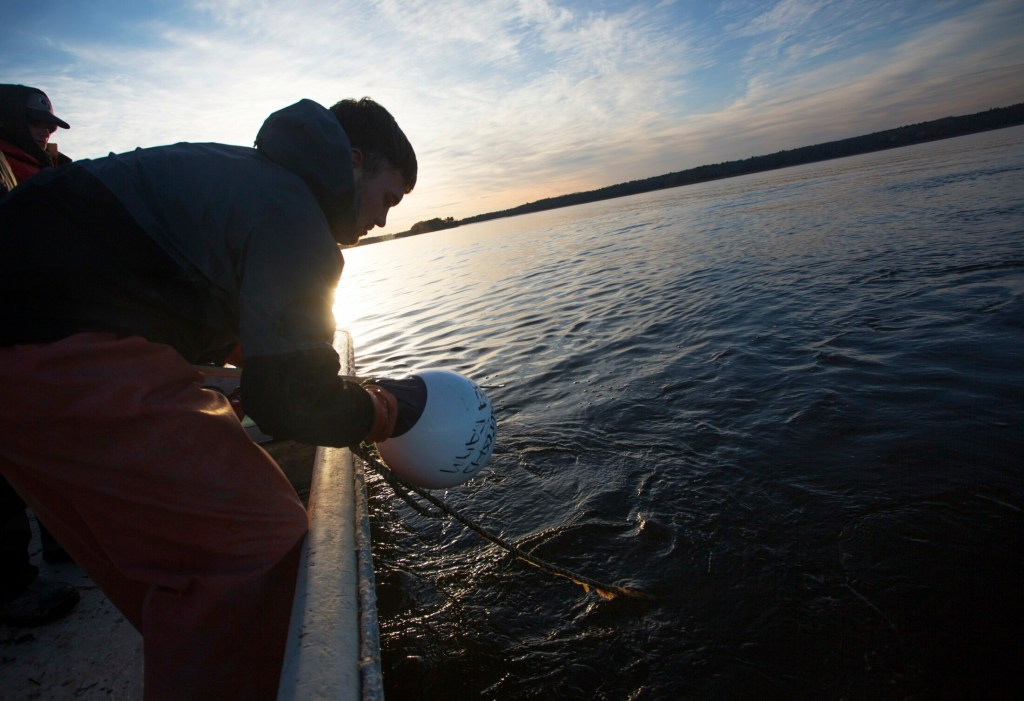 Derek Devereaux, 22, checks a buoy marking one end of a proposed 40-acre lease for an oyster farm in Maquoit Bay in Brunswick. The project helped spur a group of opponents to file a petition with the Department of Marine Resources to change the rules for granting leases so that alternate sites are considered before leases are awarded.