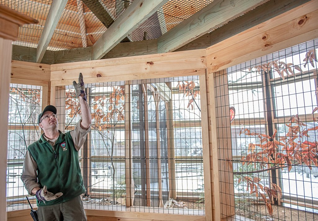 Park Superintendent Curt Johnson points out the poop deck in the new bird enclosure at the Maine Wildlife Park in Gray.