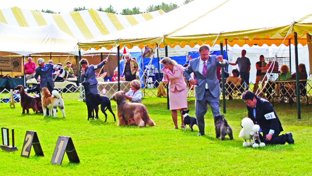 The York County Kennel Club of Maine will hold the Maine Coastal Classic All Breed Dog Shows and Obedience and Rally Trials, Maine's largest dog show, on May 16-19 at the Cumberland Fairgrounds.