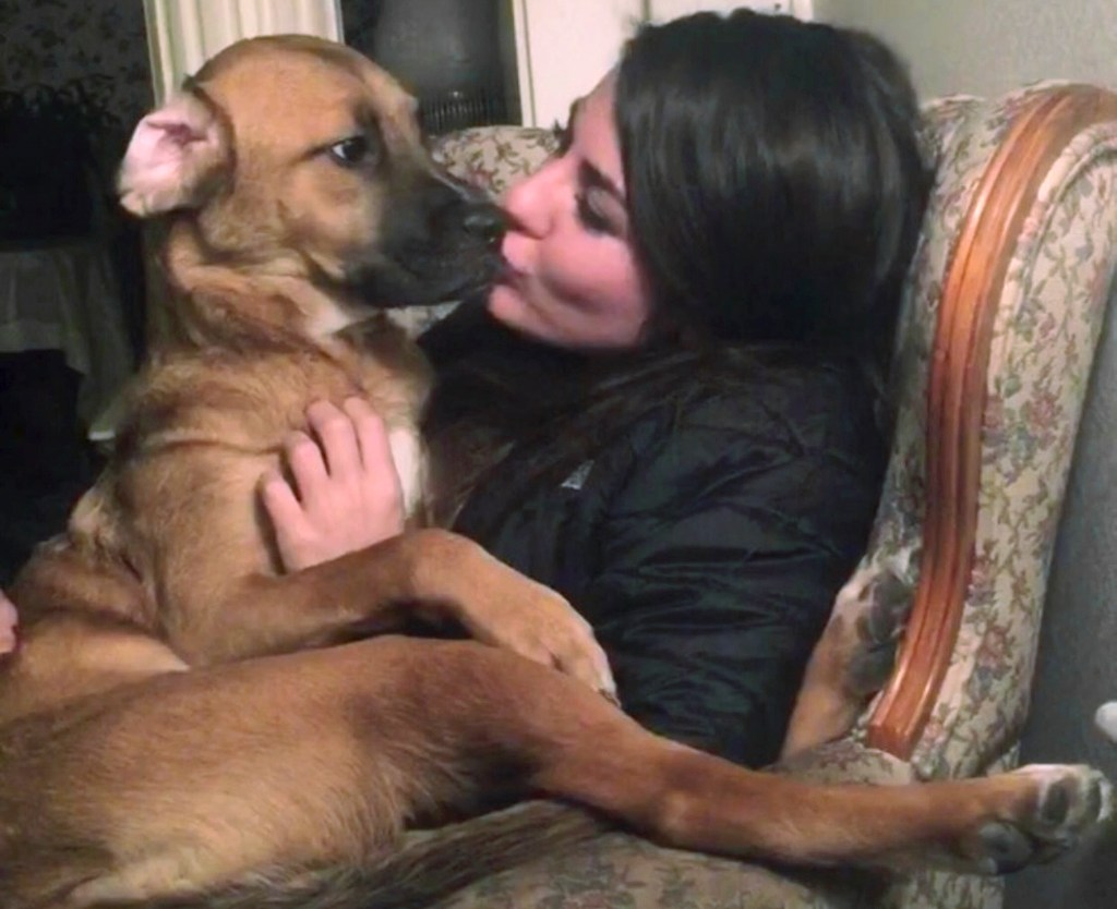 Honey, a boxer-lab mix, sits with Jessica Sardina in Bangor in an undated photo. Sardina sued to share custody of Honey, who was adopted by Sardina's former boyfriend.