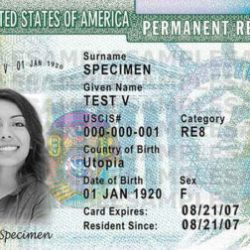 Trump administration planning changes to U S  citizenship