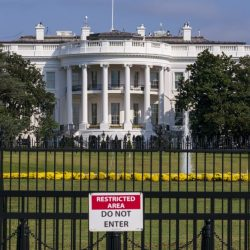 White_House_Mouse_81509