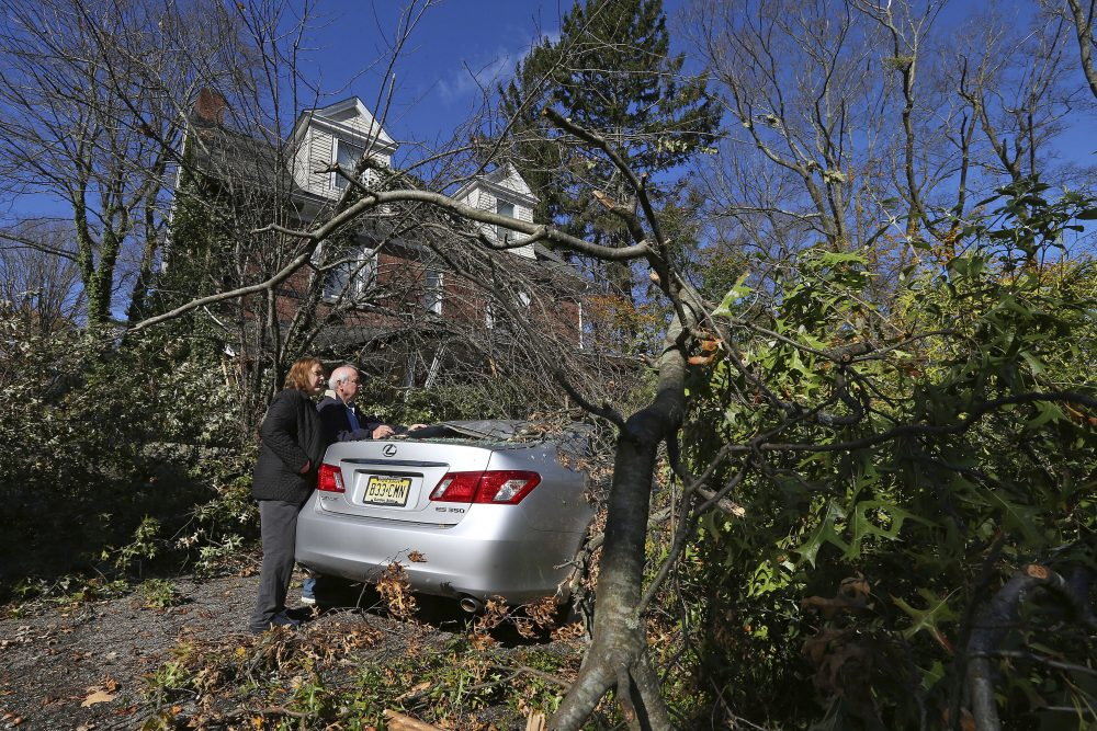 Lynda and Michael Behrens look at their crushed Lexus after an oak tree from their backyard snapped and landed on both the car and front porch on Green Village Road in Madison, N.J., on Friday. The borough was hit by high winds on heavy rain late the night before.