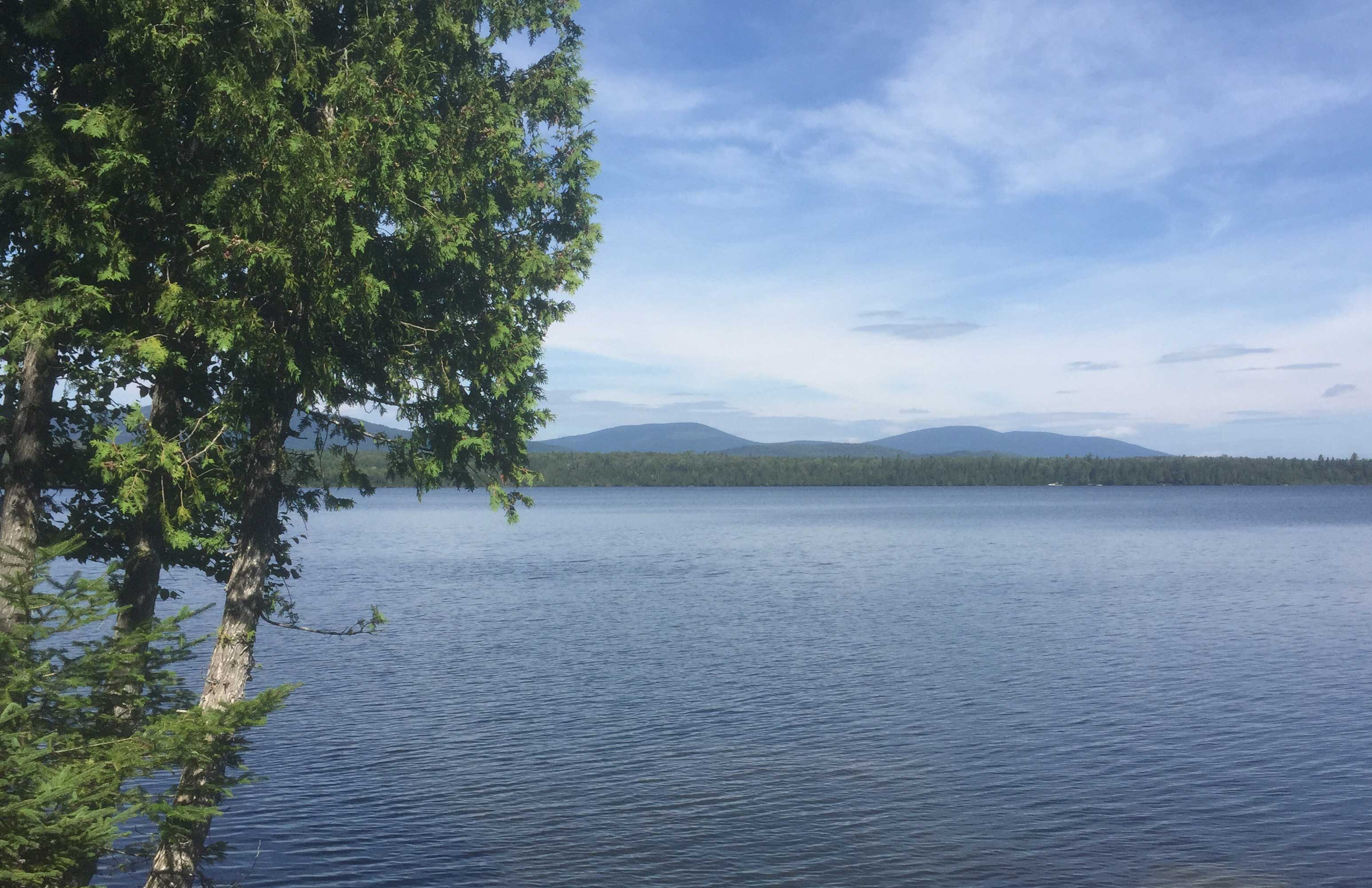 Gull Pond Earns Top Award from the Maine Lakes Society   Lewiston Sun Journal