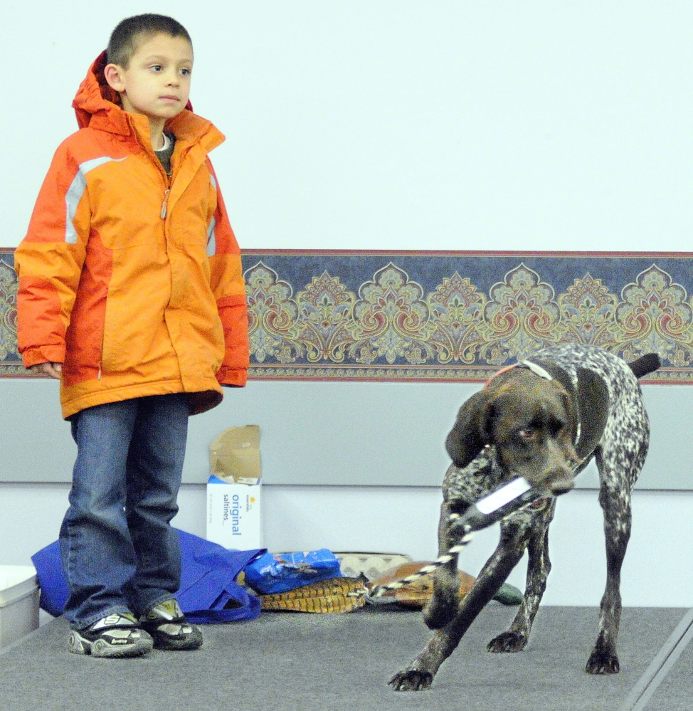 AUGUSTA, ME - MARCH 28: Daniel Tuminaro, 6 of China, watches as Autumn grabs the retriever training toy that he through during the North American Versatile Hunting Dog Association demonstration Friday at the Maine Sportsman's Show at the Augusta Civic Center. (Photo by Joe Phelan/Staff Photographer)