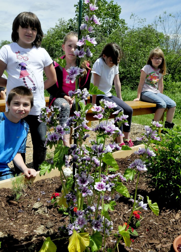 Bloomfield Elementary School students look over the thriving flowers growing in a butterfly garden created from donated materials and plants at the Skowhegan school Wednesday.