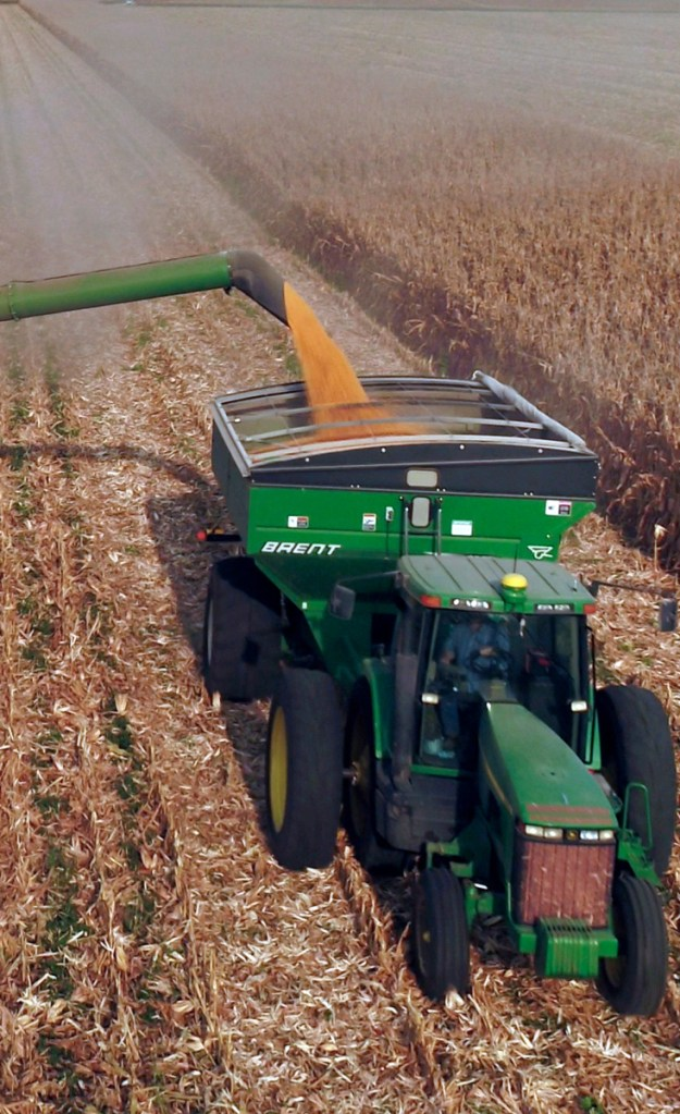Farmers are thinking it will be more profitable to plant soybeans than corn, being harvested above, in the next year.