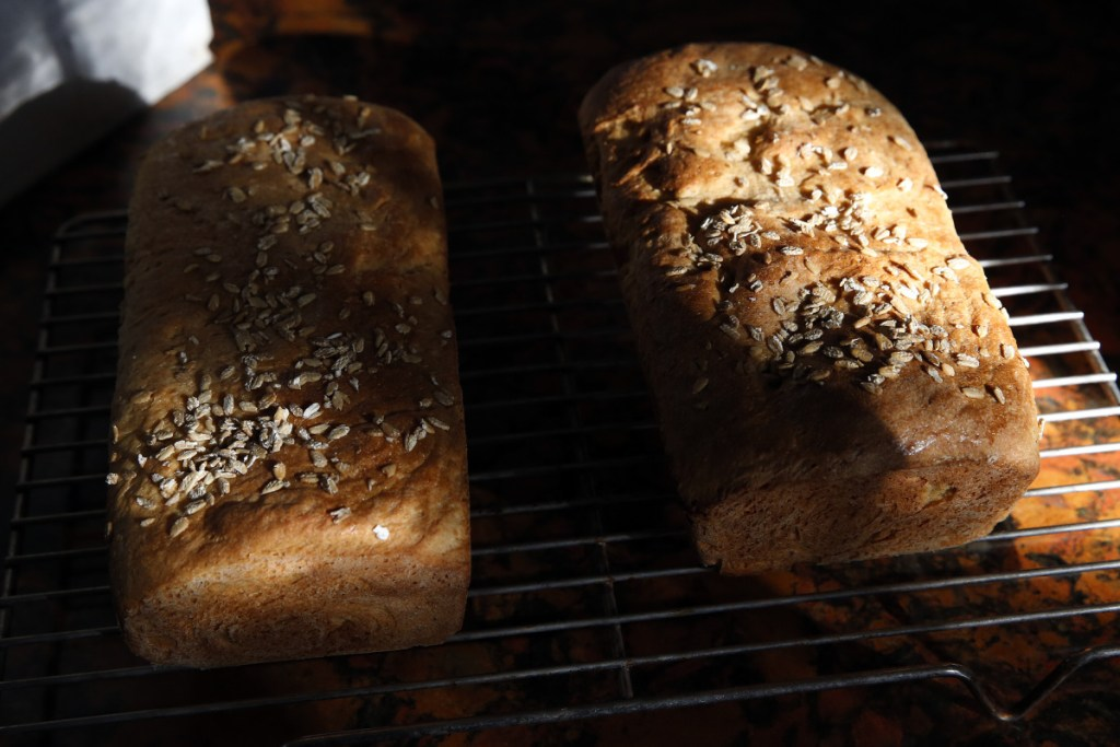 Freshly baked honey-oat bread loaves.