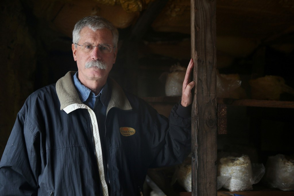 Oakshire Mushroom Farms President Gary Schroeder stands in a growing room in Kennett Square, Pa. The company recently filed for bankruptcy after losing business to shiitake mushroom logs imported from China.
