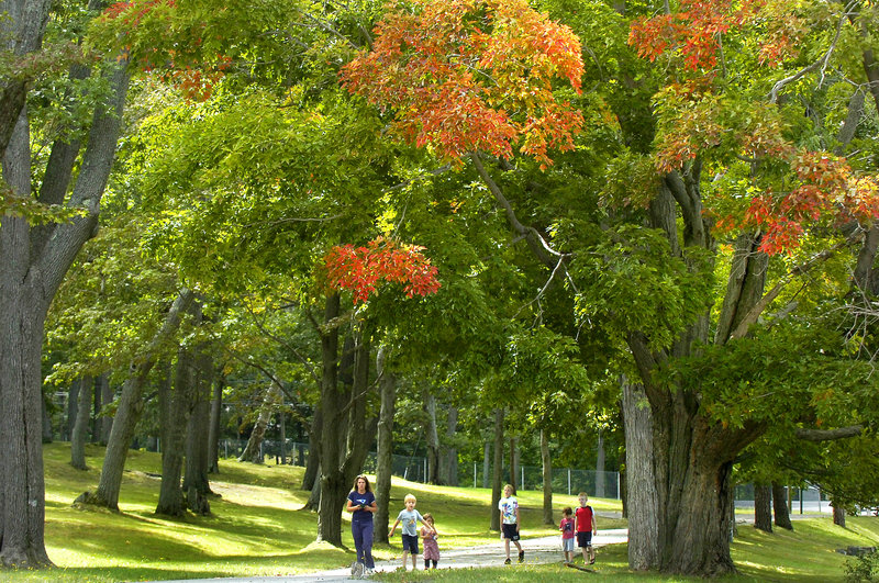 Visitors to Fort Williams Park in Cape Elizabeth stroll under a canopy of green leaves highlighted by a few branches of red and yellow Thursday. Fall foliage colors are beginning to make their appearance on some trees a little early this year.