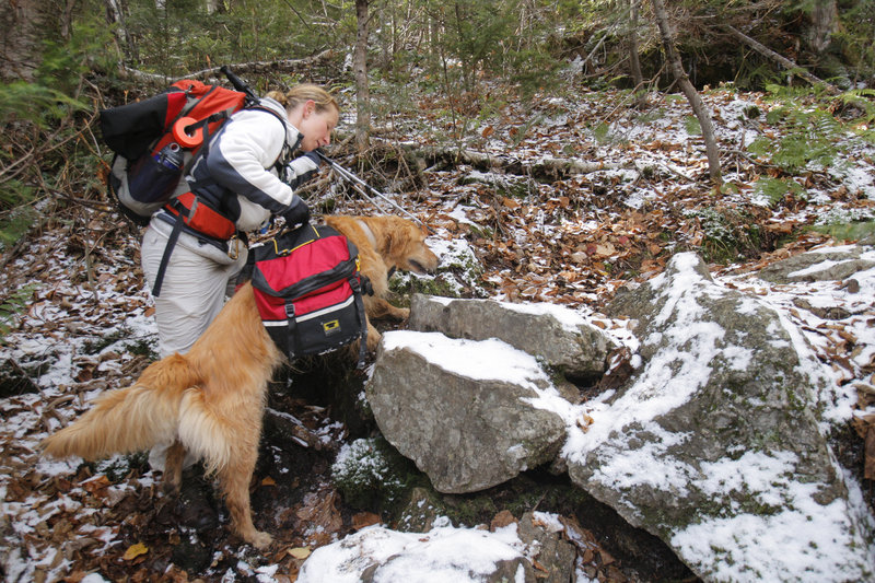 Judy Higgins of Saco helps her dog C.J. over some rocks during a recent trek in Evans Notch. She says when her energetic dogs wear packs, it helps them keep a slower pace.