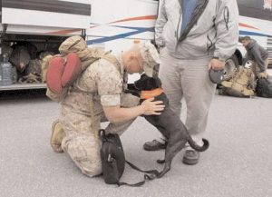 MAY 4, 2011: Lance Cpl. James Arnold of Marine Company A, 1st Battalion, 25th Regiment, says goodbye to his dog, Pete, in Topsham as he gets under way for a deployment to Afghanistan.