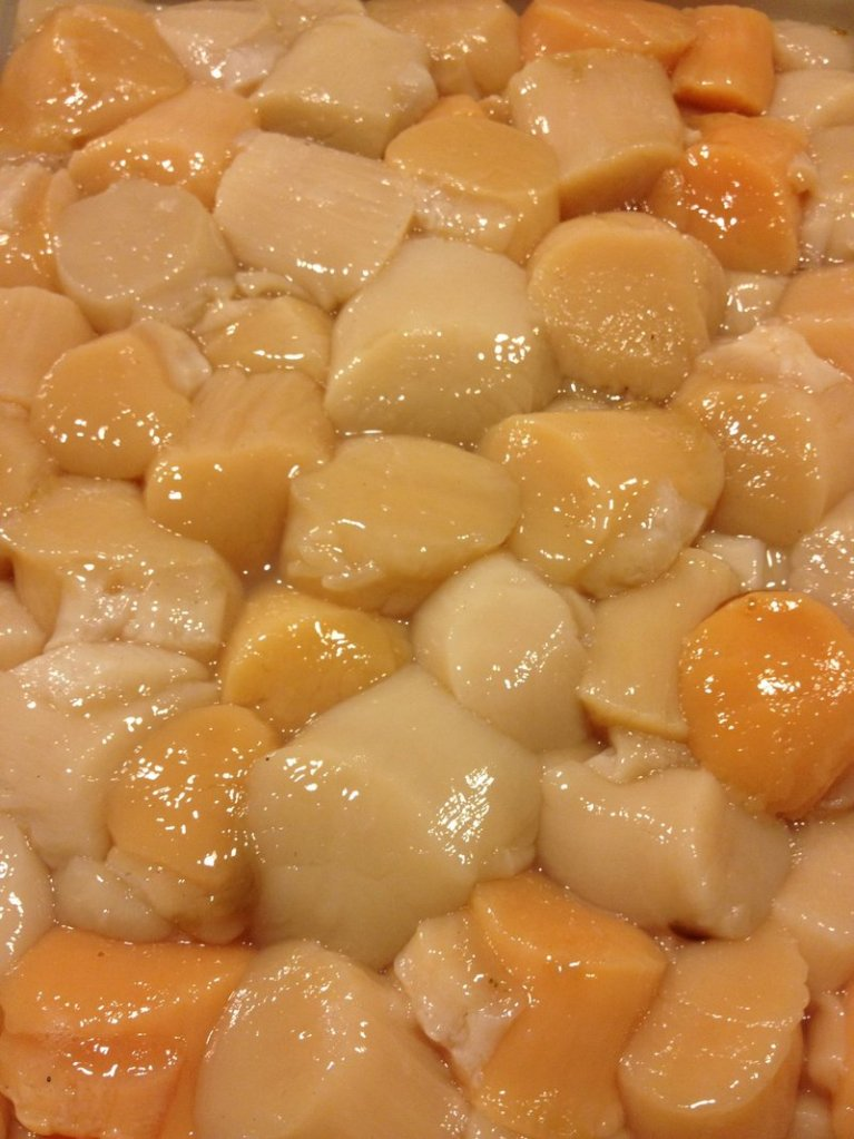 Scallops from the Blue Hill area have been particularly orange this season.