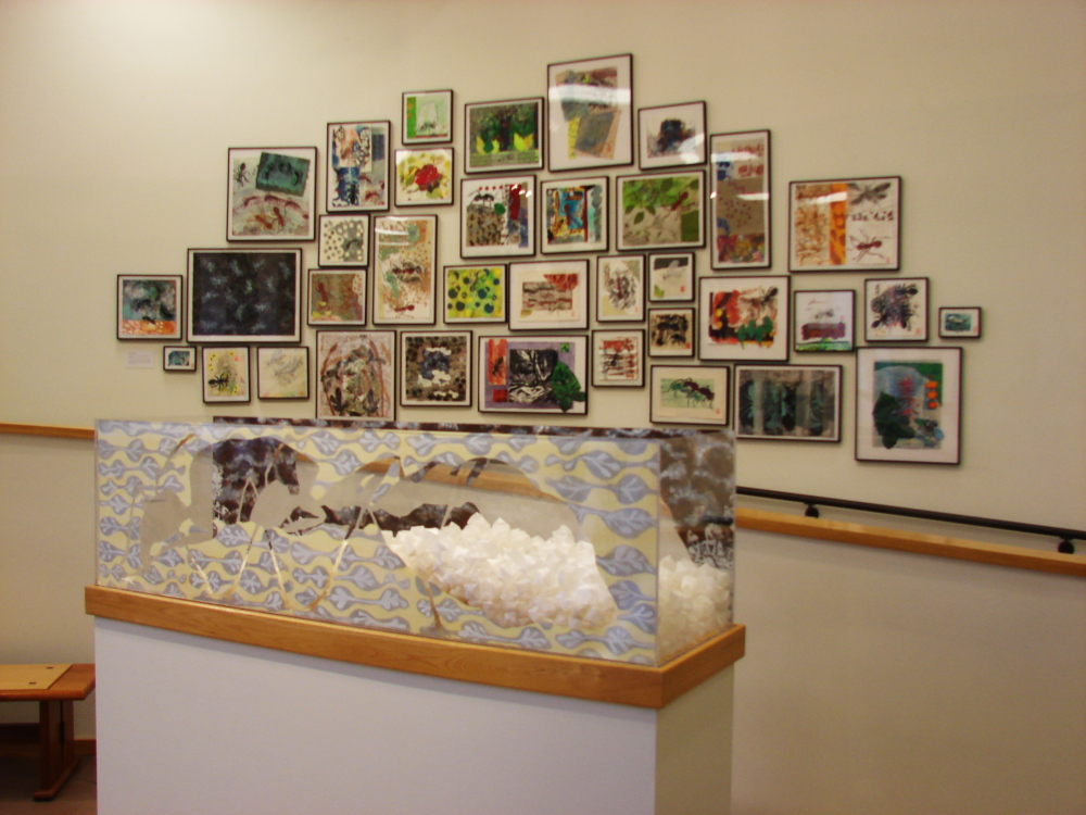"""Ant Farm: At the Nexus of Art and Science"" opens at the Atrium Art Gallery at the University of Southern Maine."