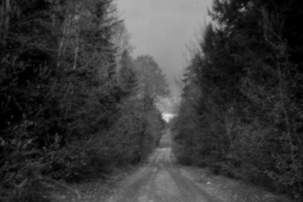 A dirt road leads into the woods in Indian Township, one of two Passamaquoddy reservations in Washington County. After years of research, an attorney representing the tribe in the mid-1960s believed he had found the way forward in a potentially historic land claims case against the state.