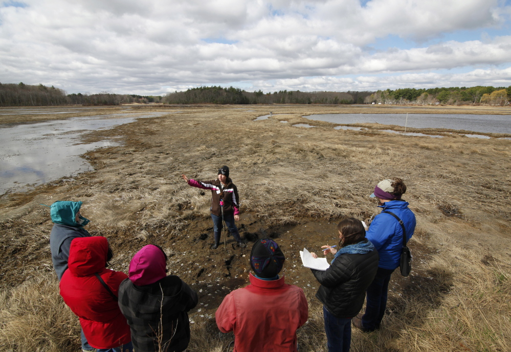 Lindsay Senecal, an Audubon Nature Center assistant, leads volunteer naturalists through the Scarborough Marsh. Volunteers have shown incredible dedication through the years.